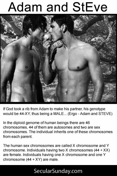 Adam-and-StEve-belief