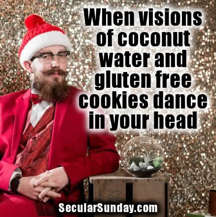 hip-santa-coconut-water-gluten-free-cookies